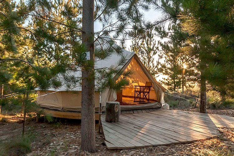 Specialty Glamping